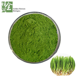 Organic Wheatgrass Powder / Wheat Grass Juice Powder