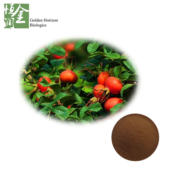 Natural Rose Hip Extract Powder VC Flavone Rosehip Polyphenols