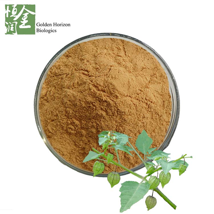 Gluten Free Physalis Angulata Extract Treating epilepsy