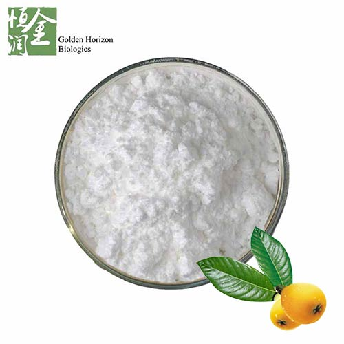 High Quality 98% Ursolic Acid Manufacturer Loquat Leaf Extract Ursolic Acid