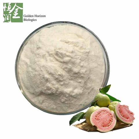 Factory Supplier 100% Natural Guava Fruit Extract Powder in Bulk
