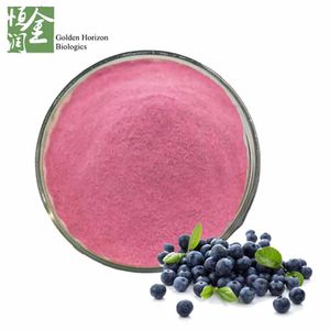 Organic Blueberry Fruit Extract Blueberry Juice Powder
