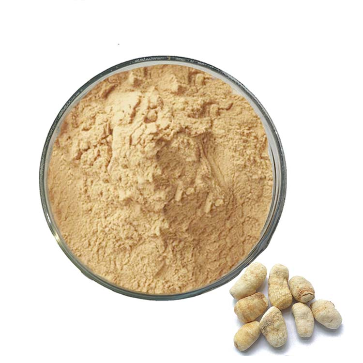 Chinese Herb Rhizoma Typhonii Extract Powder