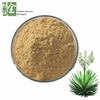 Factory Supply Yucca Extract Powder for Pet Health Yucca Powder