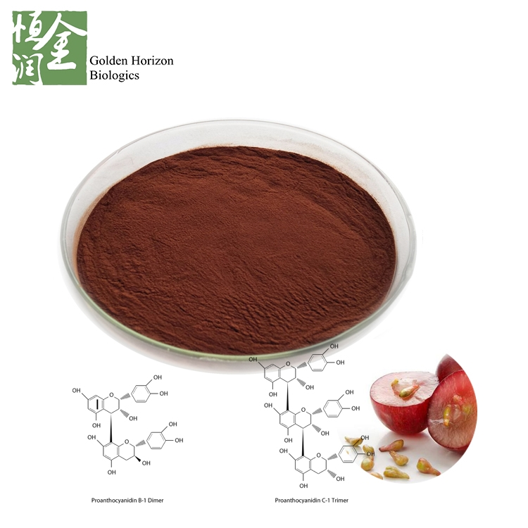 Antioxidant Grape Seed Extract Powder OPC Proanthocyanidin 95% Plant Extract