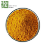Factory Supplement Vitamin B9 (Folic Acid) Powder CAS NO 59-30-3