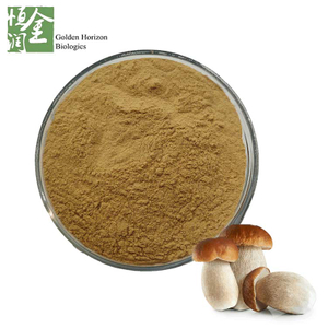 Natural Wild Porcini Mushroom Extract Powder/Boletus edulis Extract Polysaccharide 10%~50%