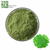 Whosale Organic Moringa Extract Powder