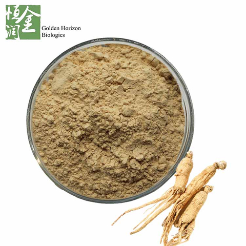 High Quality American Ginseng Extract Ginsenosides 20%
