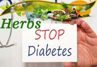 5 Herbal Extracts Remedies For Diabetes