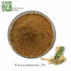 Manufacture Tongkat Ali Extract Powder Eurycomanone 2%