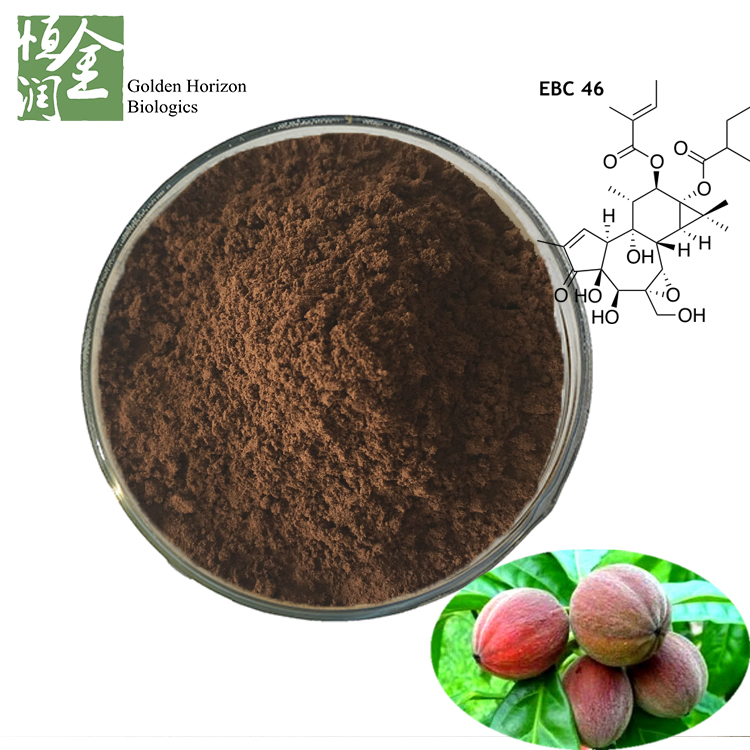 Factory Supply Wholesale Anti Tumor Pharmaceuticals Blushwood Berry Fruit Extract 5:1,10:1
