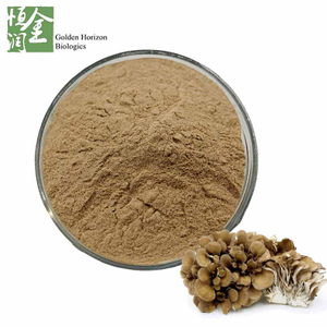 Nautural Maitake Mushroom Extract Powder Polysaccharides 30% for Weight Loss