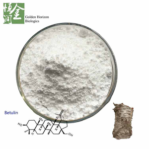 Factory Supply White Birch Bark Extract CAS 473-98-3 98% Betulin Powder