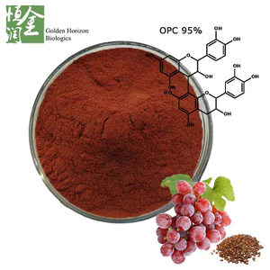 High Quality Antioxidant Proanthocyanidin Grape Seed Extract Powder in Bulk