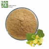 Natural Linden Flower Extract Powder