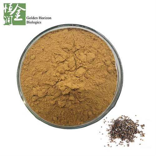Bulk Powder Chia Seed Extract 5%-60% Carnosic Acid Powder