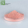 Natural Acerola Cherry Extract Powder Vitamin C