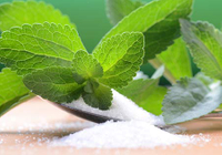 Stevia Extract is Better than Antibiotics on Lymedisease