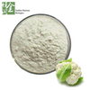 Top Grade Pure Natural Cauliflower Extract / Cauliflower Powder
