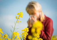 Popular Science: Functional Raw Materials That Can Relieve Pollen Allergy