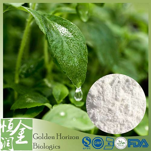 Food Additive Sweetener 95% Stevioside RA 98% Stevia Rebaudiana Stevia Leaf Extract